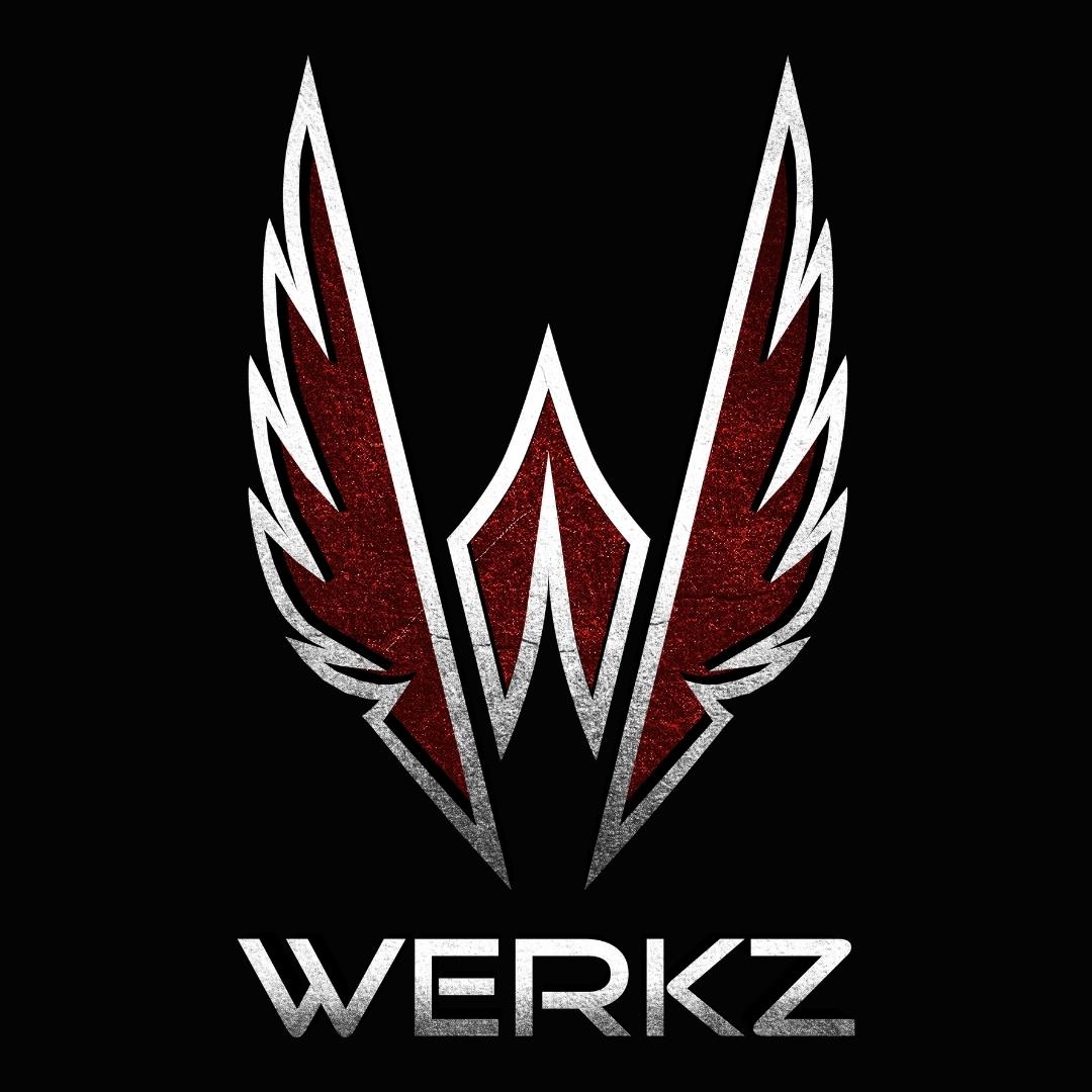 The Werkz M5 -- body side has a full sweat shield